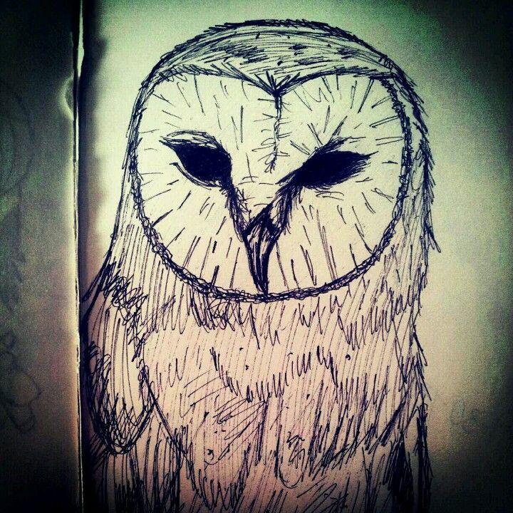 Hedwig drawing