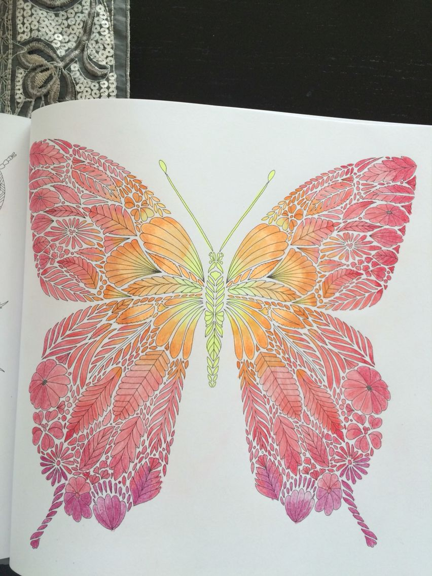 Millie Marotta Tropical Wonderland Millie Marotta Coloring Book Millie Marotta Tropical Wonderland Butterfly Coloring Page [ 1136 x 852 Pixel ]