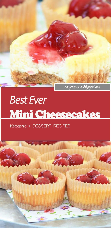Best ever mini cheesecakes mini cheesecakes mini