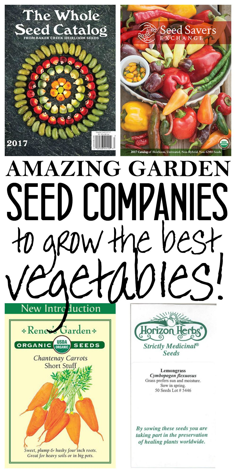 garden seed companies. Amazing Garden Seed Companies For The Best Vegetables - Dory Fitz D