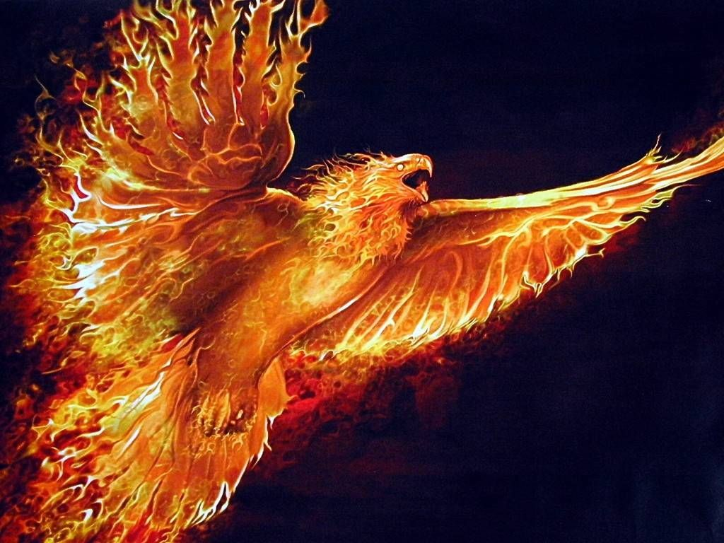 Феникс: картинки, рисунки и описание мифологической птицы ...