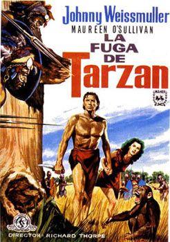 Imagen De Http Www Rafaelcastillejo Com Tarzan Lafugadetarzan Cartel Jpg Tarzán Carteles De Películas Famosas Tarzan Pelicula