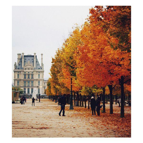 ZsaZsa Bellagio: Autumn Hue via Polyvore