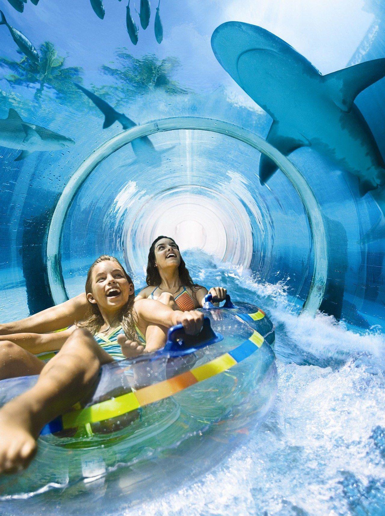Shark Tunnel At The Wild Wadi Water Park Dubai Things
