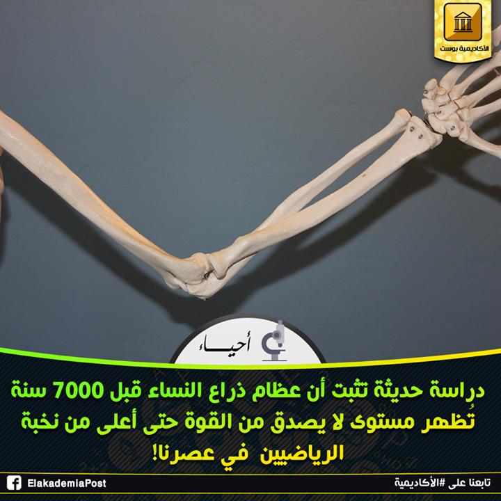 عظام الذراع للنساء الذين عاشوا قبل 7000 سنة تظهر مستوى لا يصدق من القوة حتى أعلى من نخبة رياضيين عصرنا وهذا وفقا لأول لدراسة تقارن بين قوة العظام في فترة ما قب