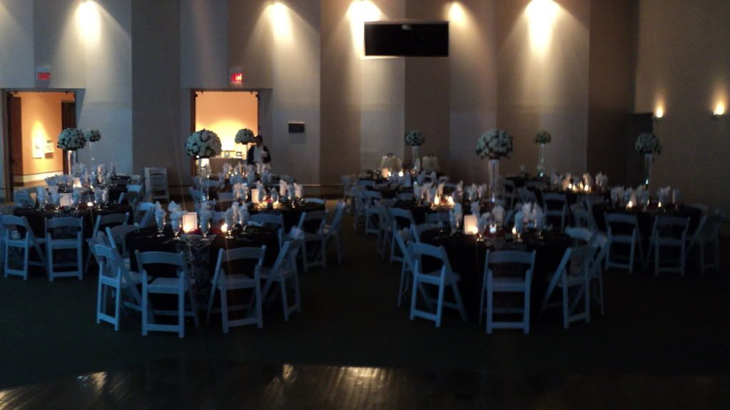 The Witte Museum Wedding Reception San Antonio,TX