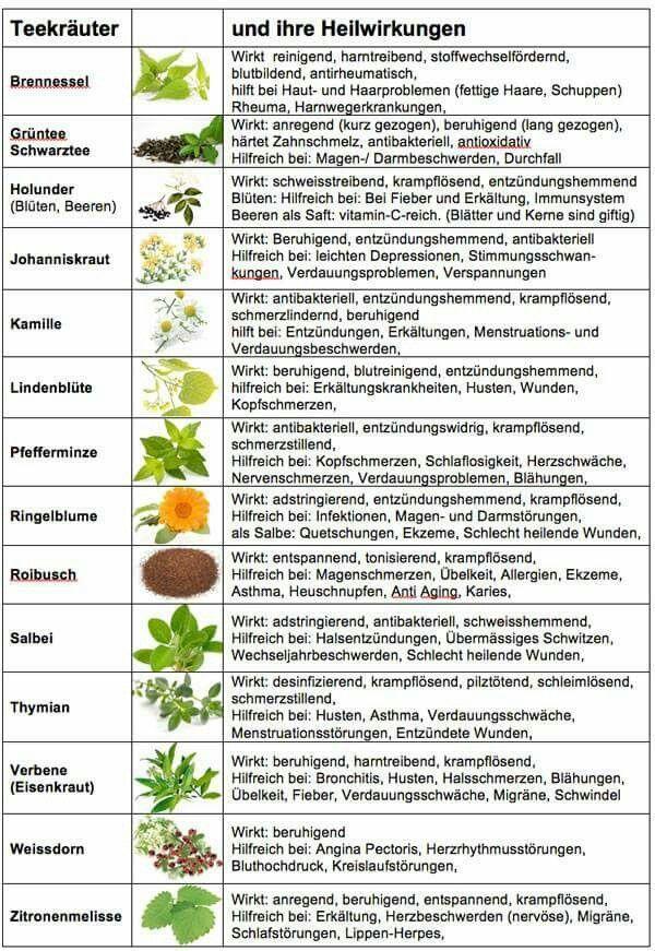 Heilkräuter und ihre Wirkung #kräutergartenbalkon