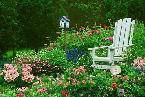 A Whimsical Garden spot to sit -- Bright Blooming Flowers and a Hand-Painted Birdhouse