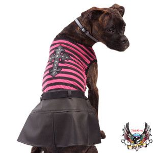 Bret Michaels Pets Rock Pink Dress W Cross Petsmart Pets Rock