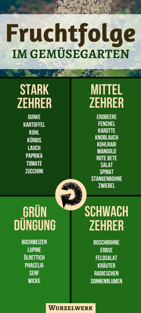Fruchtfolge planen im Gemüsegarten – Starkzehrer, Mittelzehrer, Schwachzehrer - Wurzelwerk #howtogrowvegetables