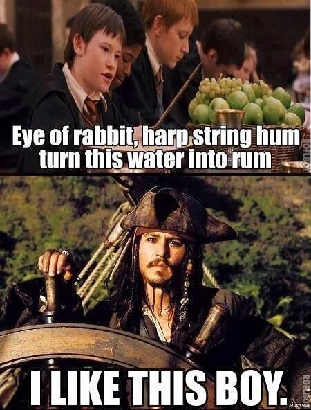 Pyreflies Thepyreflies Fluch Der Karibik Harry Potter Lustig Meme Lustig