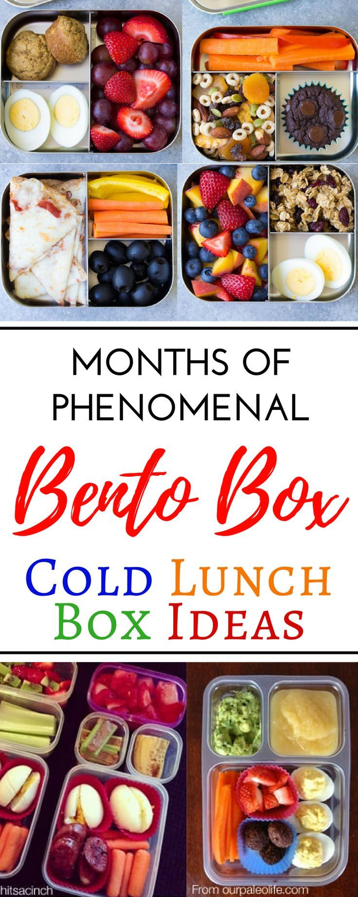 creative cold school lunch box ideas for picky eaters | baby/kids