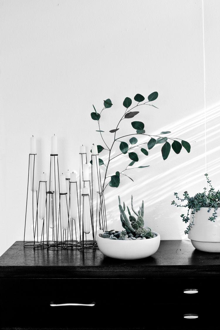 Minimal Seasonal Decorating with Eucalyptus