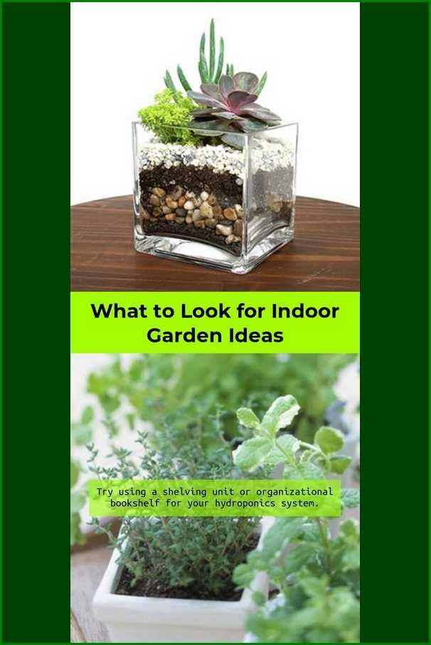 how to grow a simple garden