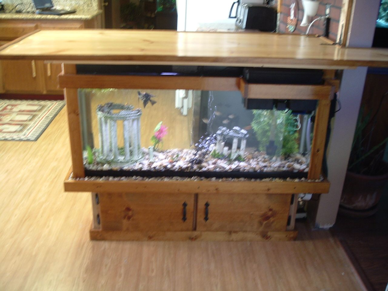 Fish tank in kitchen - This Is A 55 Gallon Fish Tank Bar That Sits In Our Kitchen I