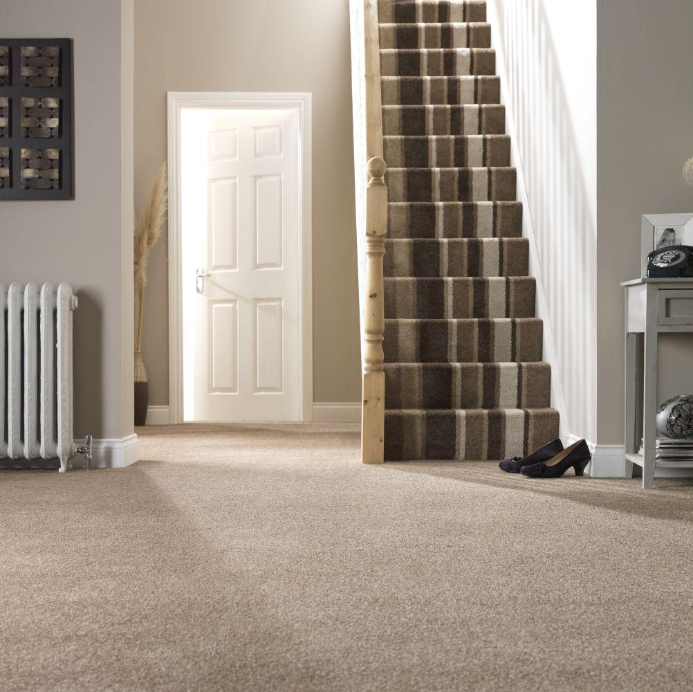 Mardi Gras Vinyl Flooring Carpetright Striped Carpet Stairs Carpet Stairs Striped Carpets