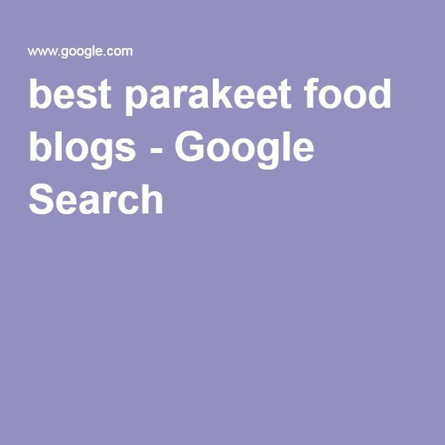 best parakeet food blogs - Google Search