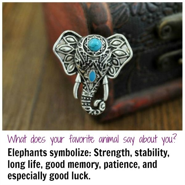 What Does Your Animal Ring Say About You Animal Ring And Choices