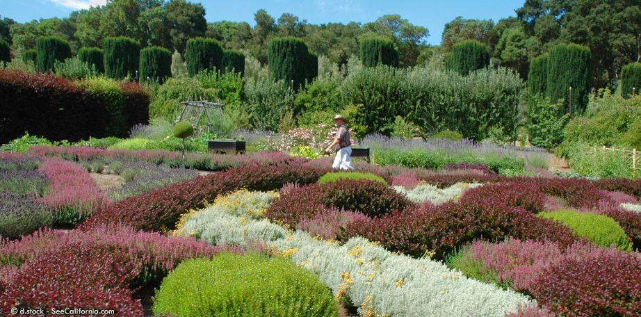 Filoli Gardens Flower garden, Botanical gardens, Garden
