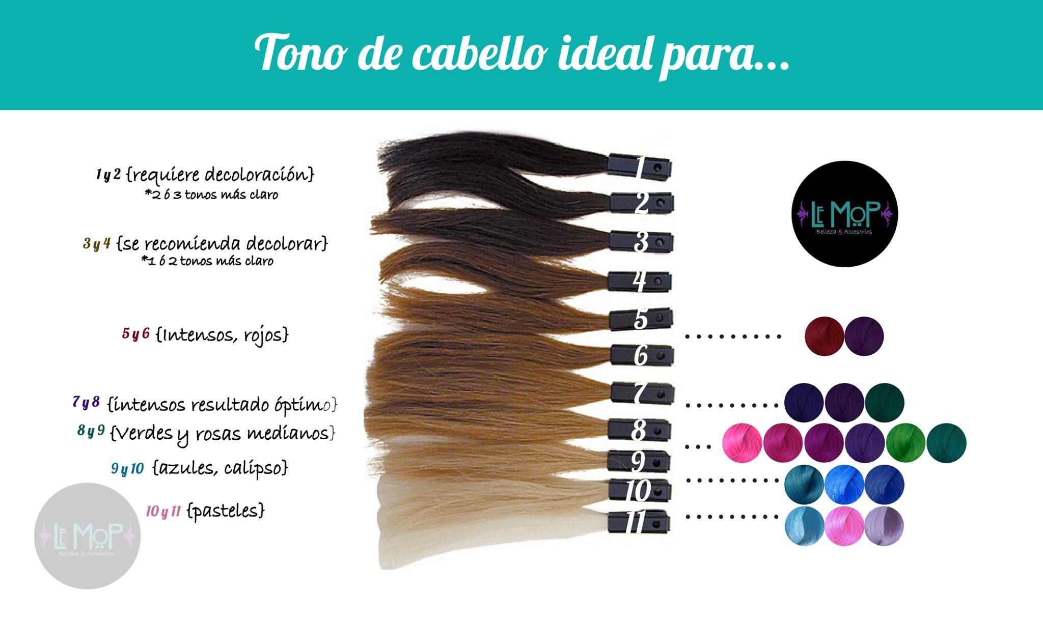 Nivel De Decoloracion Para Tintes Fantasia Decoloración De Cabello Tonos De Cabello Colorimetria Cabello