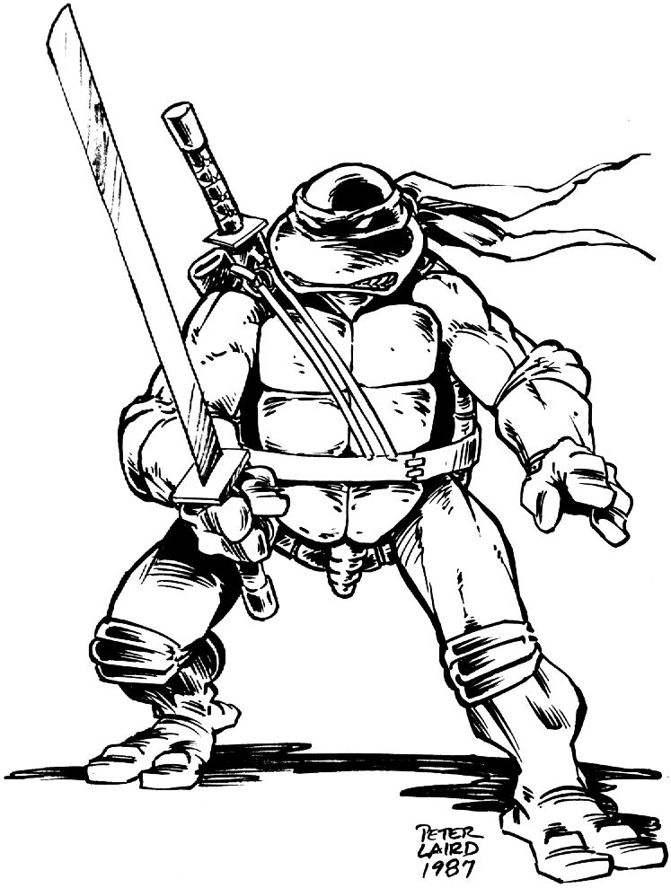 Peter Laird Teenage Mutant Ninja Turtles Art Ninja Turtles Art