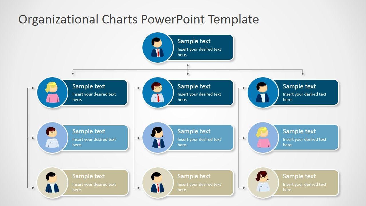 Management Organizational Chart Template Organizational Chart Org Chart Organization Chart