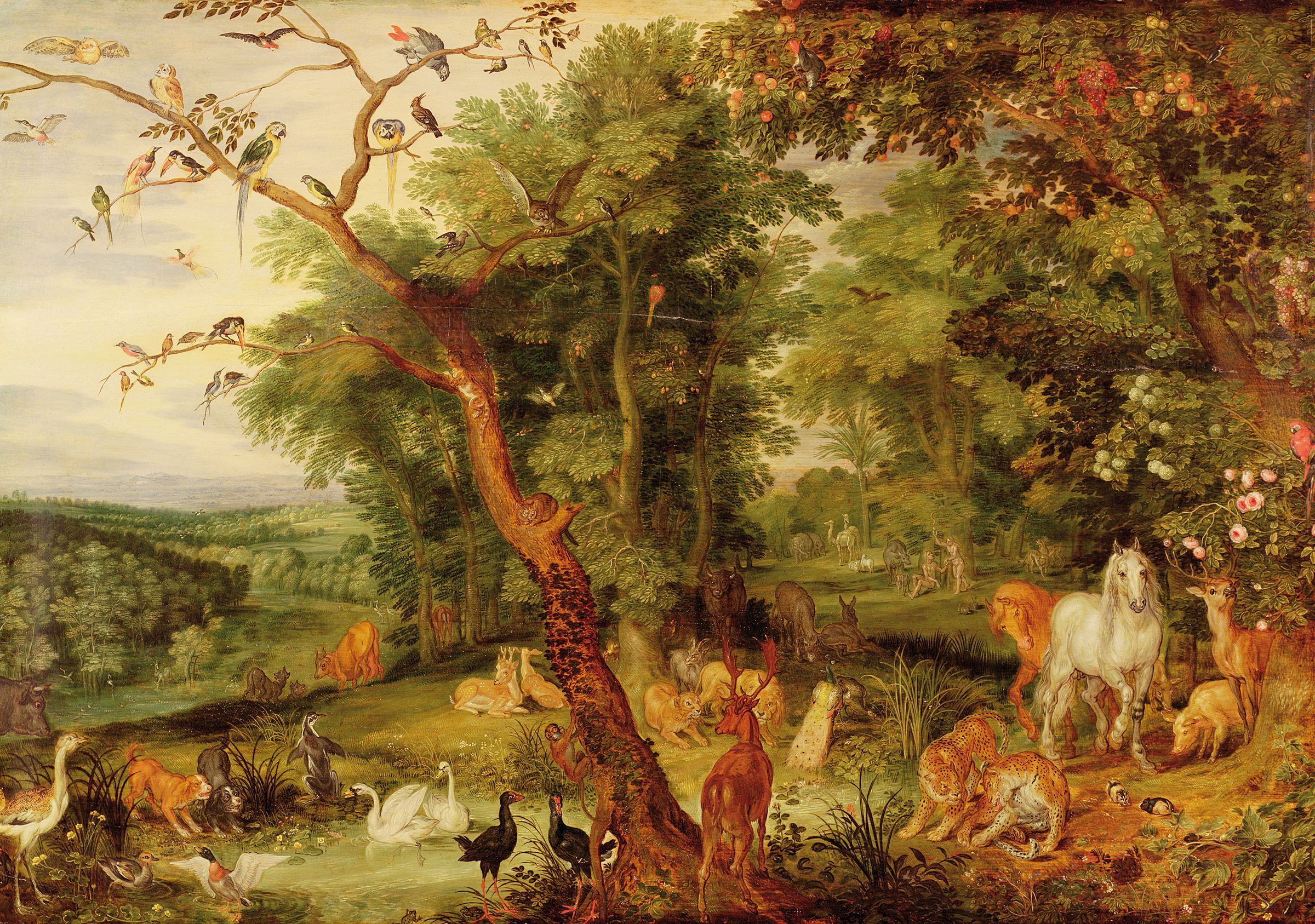 Jan Brueghel The Elder Was A Flemish Painter And Draughtsman And The Son Of The Renaissance Painter Pieter Brueghel The Elder The Garden Of Eden Art Fine Art