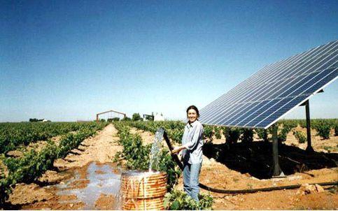 monocrystalline solar panel -Sungold Solar
