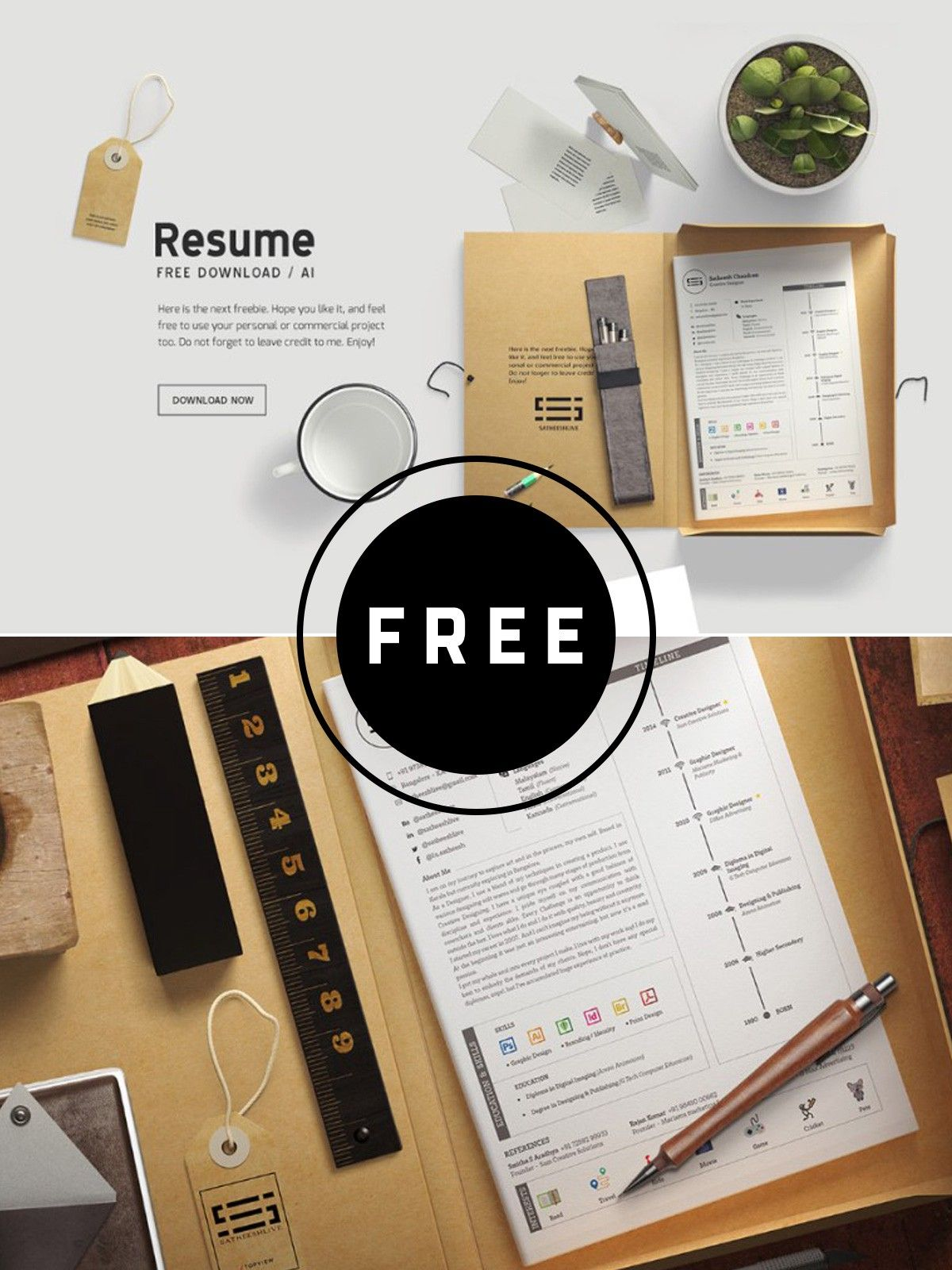 100 Free Best Resume Templates For 2019 in 2020 Resume