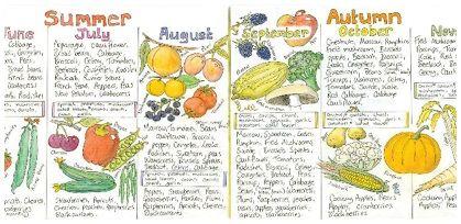 Uk seasonal fruit and vegetable chart seasonal food pinterest