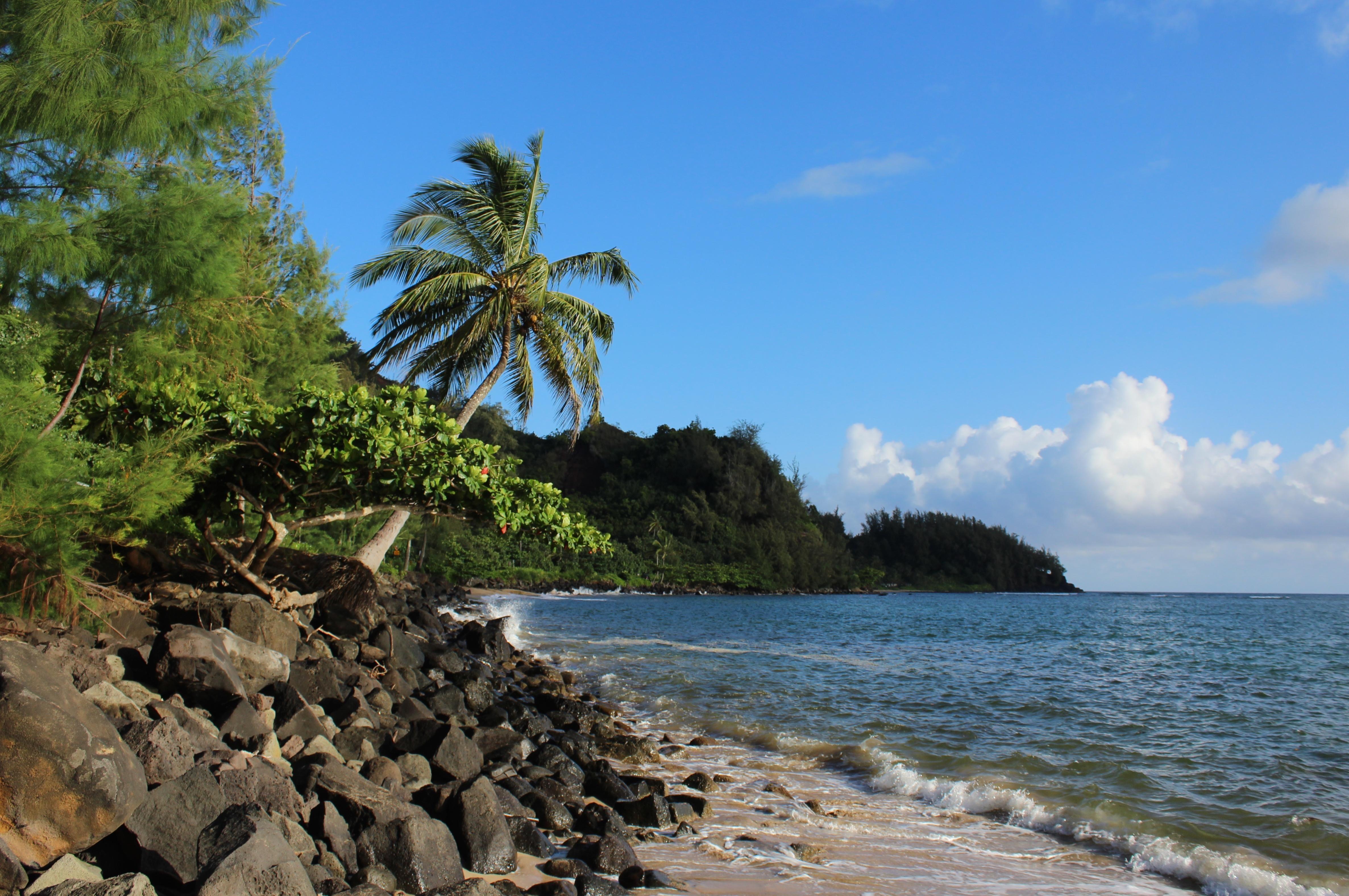 Hanalei Bay Kauai