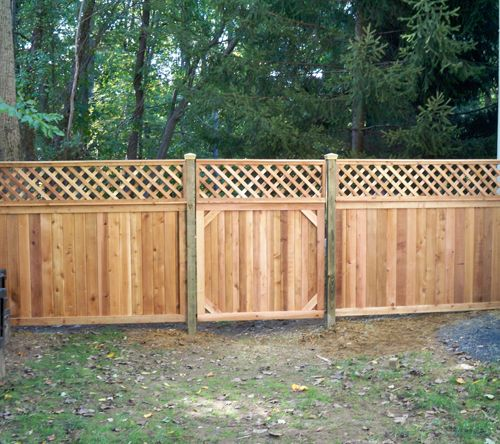 Privacy fence with lattice toppers diy ideas pinterest for Cheap garden privacy ideas