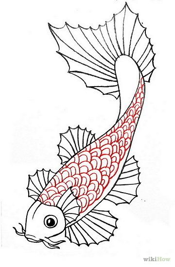 Draw a koi fish koi fish and drawings for Japanese koi fish drawing