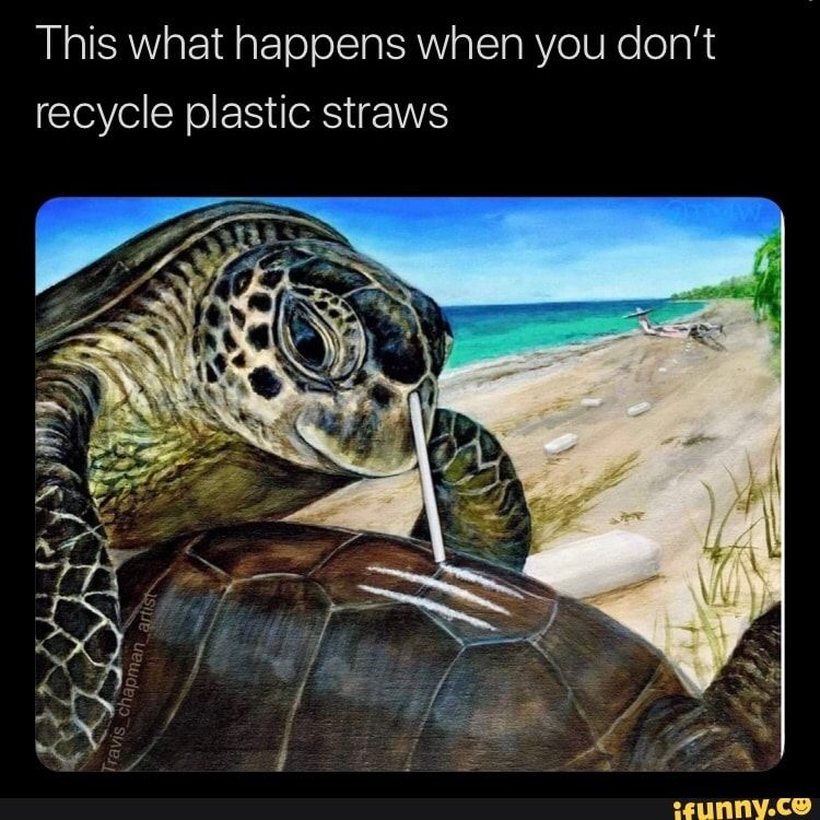 This What Happens When You Don T Recycle Plastic Straws Ifunny