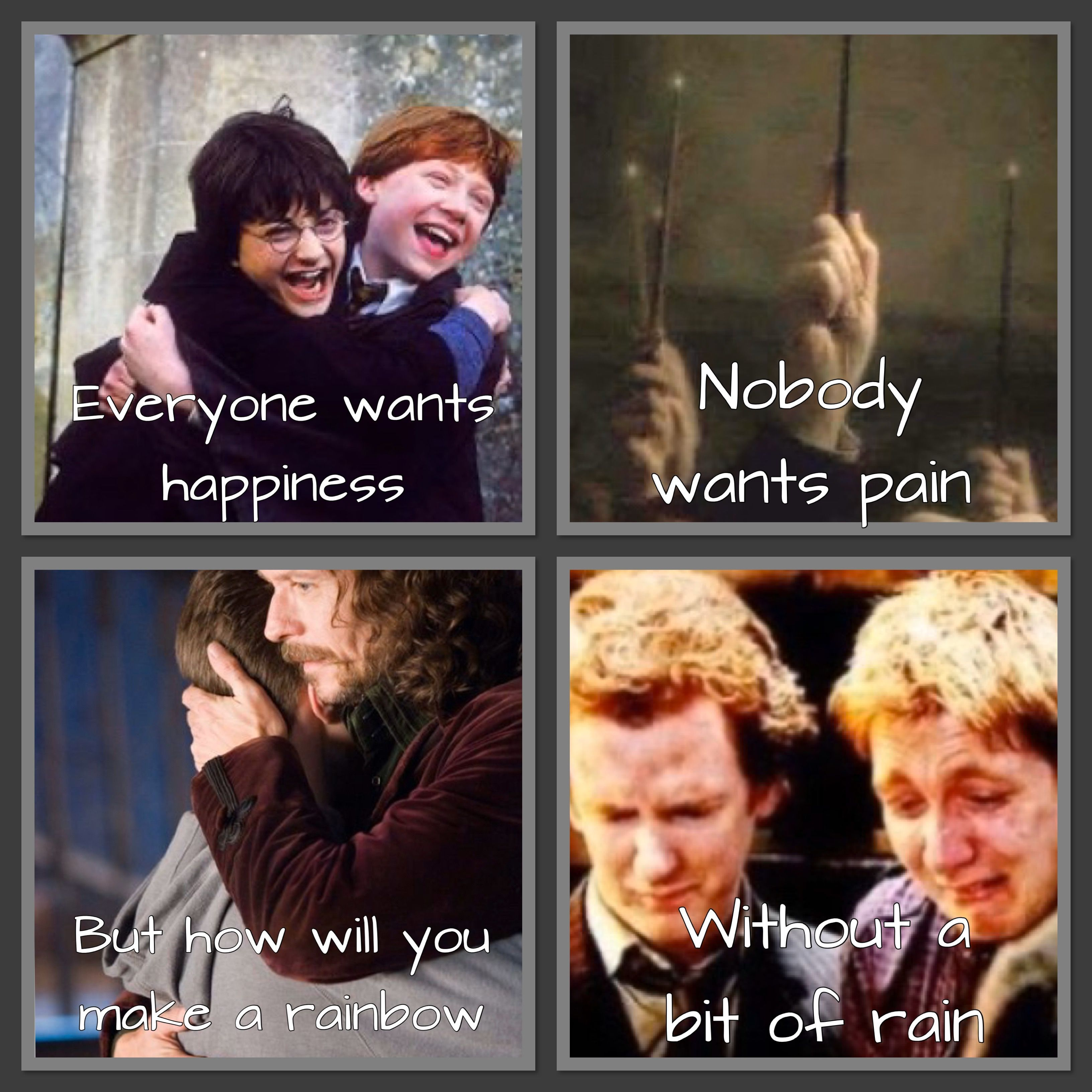 Pin By The Pan Panda On Marvel In 2020 Harry Potter Feels Harry Potter Quotes Harry Potter Images