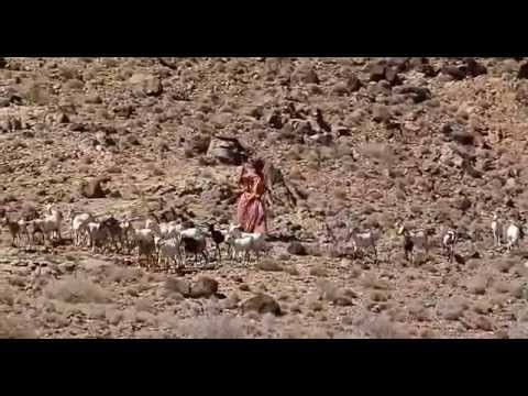 Flor del desierto castellano online dating