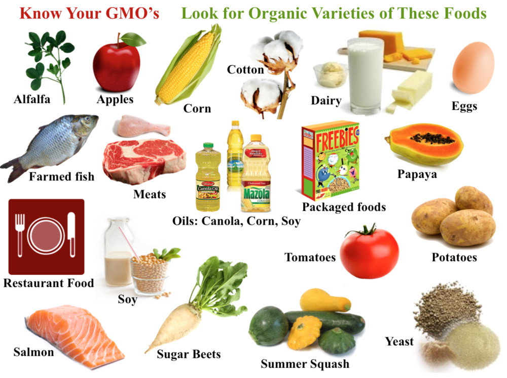 It's important to learn what is GMO and how to cut it out of