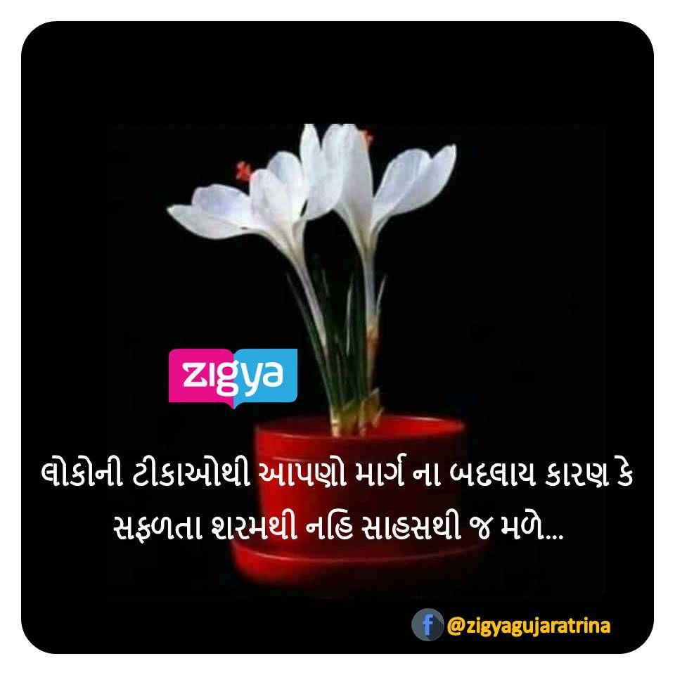 ગ જર ત સ વ ચ ર Gujarati Quotes Quotes Plants