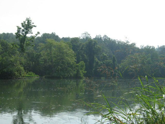 Perfect spot to build your get away cabin or to build your dream home. Either way you can step out your back door and see the beautiful Spring River. This 5+ acre tract contains 250 feet of right frontage, so you can float, fish or swim whenever you would like. Call Jason 870-847-5846 for complete details in Hardy AR
