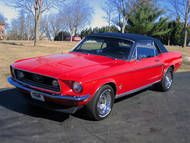 1 Tag lang Ford Mustang Cabrio fahren