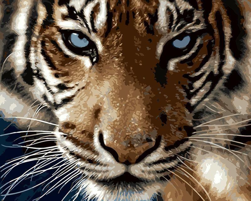Le Regard Du Tigre Peinture Par Numero Animaux Peinture Tigre Tigre
