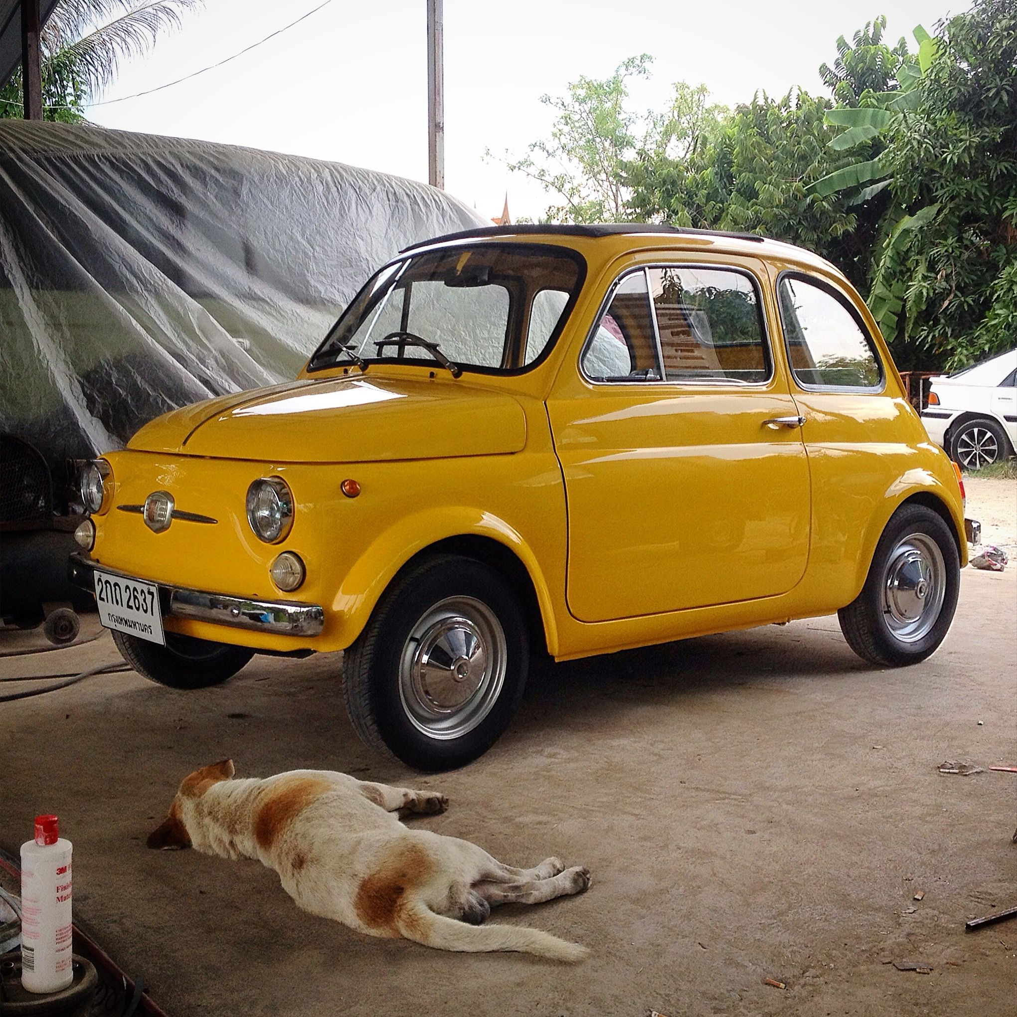 Fiat 500 : Restore By TOny Run GaragE
