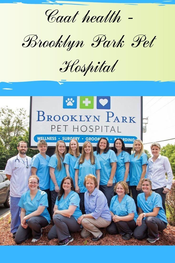 Brooklyn Park Pet Hospital Animal hospital, Cat health
