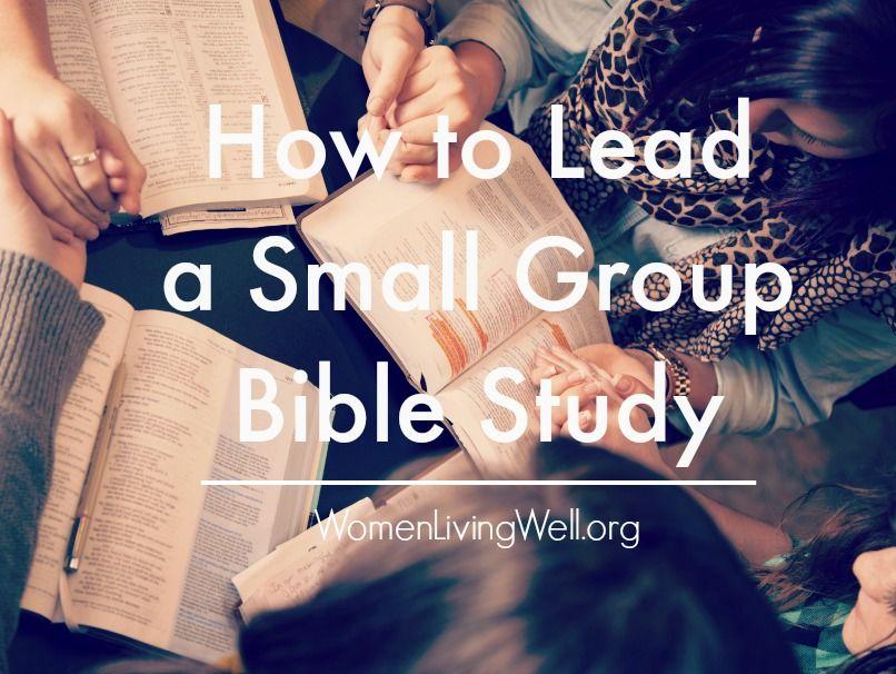 Small group study cevresi baylar