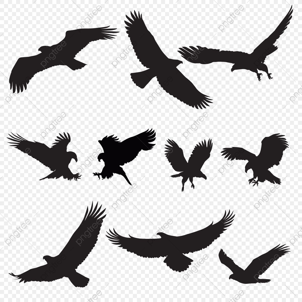 Eagle Hawk Bird Png Image With Transparent Background Motorcycle Illustration Eagle Pictures Horse Silhouette