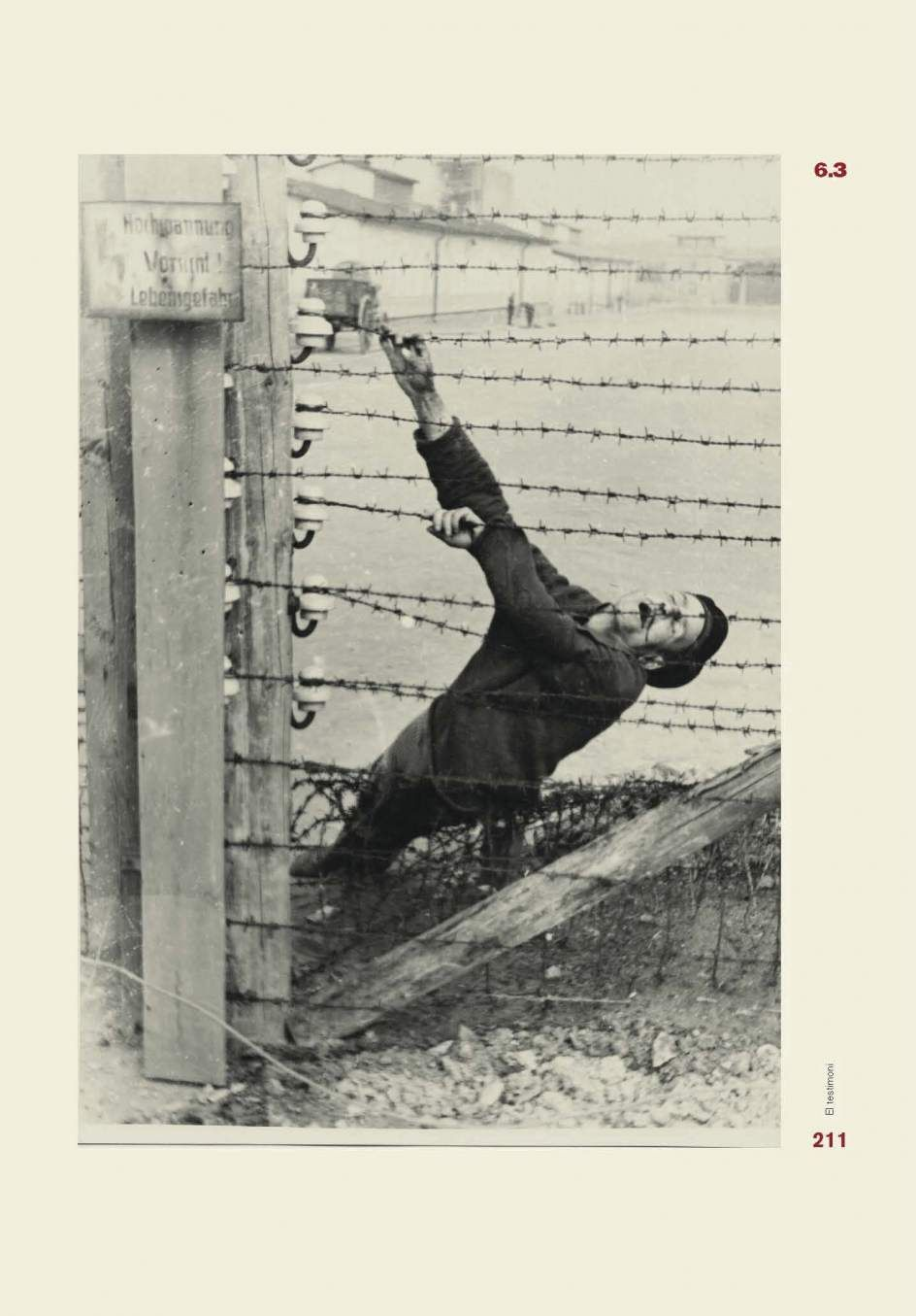 Prisionero muerto en Mauthausen | HISTORIA CONTEMPORÁNEA | Pinterest