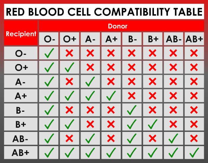 Red blood cell compatibility table 1 great information