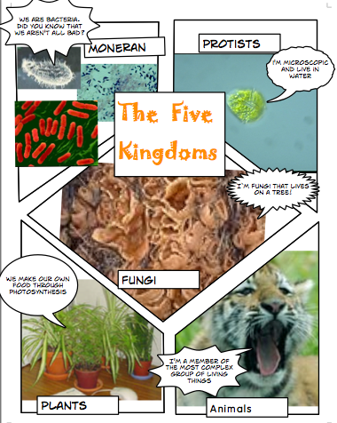 5 kingdoms of living things craft comic style science week 2 classical conversations cycle. Black Bedroom Furniture Sets. Home Design Ideas
