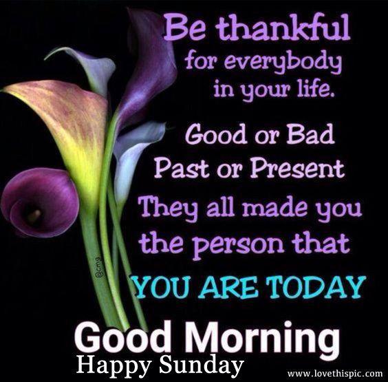 Good Morning Happy Sunday Good Morning Happy Sunday Good