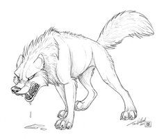 Sketch Anger By Tanidareal Wolf Drawing Wolf Head Drawing Wolf